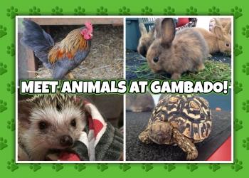 Animal Event
